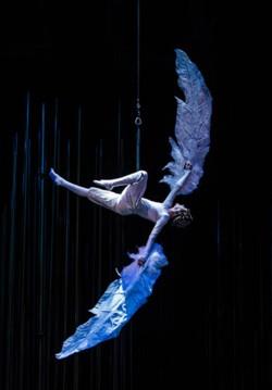Cirque du Soleil-Varekai