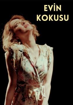 2019-12-13 20:30:00 Evin Kokusu