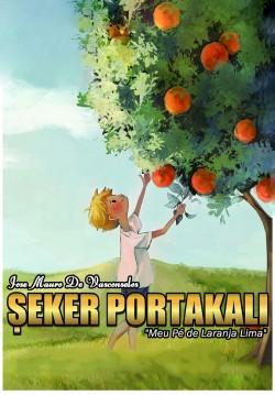 2019-07-30 21:00:00 Şeker Portakalı