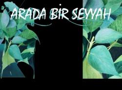 Arada Bir Seyyah