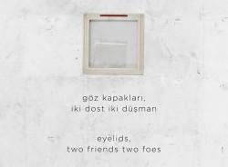 Göz kapakları, iki dost iki düşman