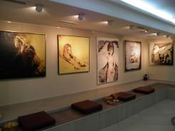 Medya Sanat Galerisi
